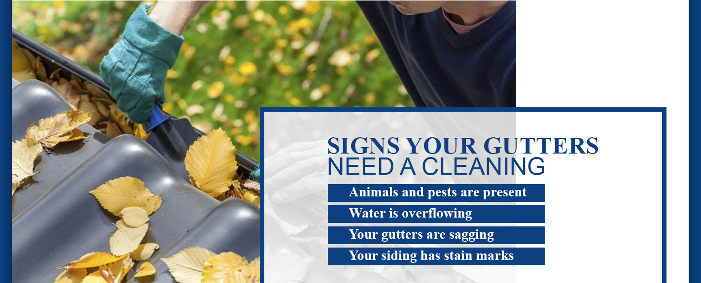 bullet list of signs your gutters need to be cleaned